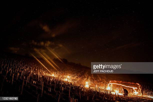 Winegrower from the Daniel-Etienne Defaix wine estate lights anti-frost candles in their vineyard near Chablis, Burgundy, on April 7, 2021 as...