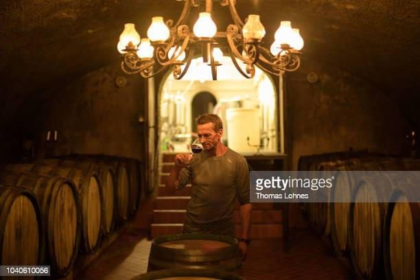 Winegrower Patrick Kallfels tests red wine in his barrel cellar on September 24 2018 in Kroev Germany Germany experienced an exceptionally long and...