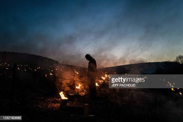 Winegrowers from the Daniel-Etienne Defaix wine estate lights anti-frost candles in their vineyard near Chablis, Burgundy, on April 7, 2021 as...