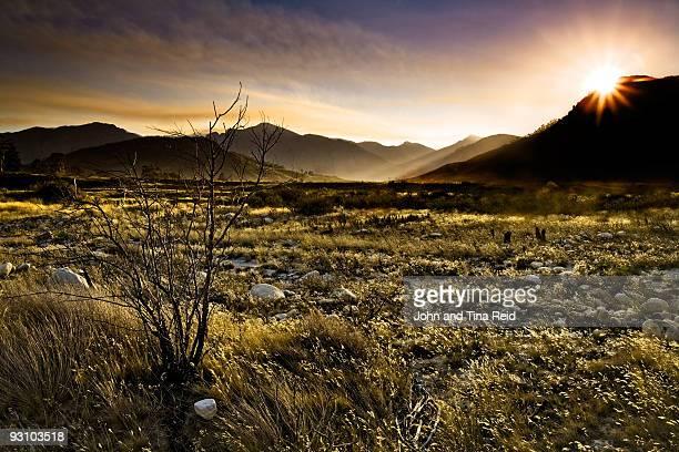 Winelands Wilderness