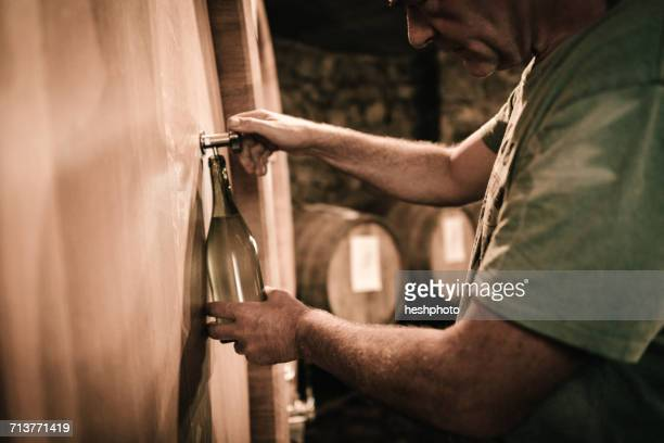 winemaker filling wine bottle from cellar barrel - heshphoto stock pictures, royalty-free photos & images
