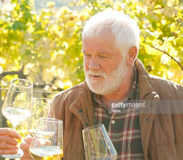 winemaker in weingarten mit einem glas weißwein - produzent stock-fotos und bilder