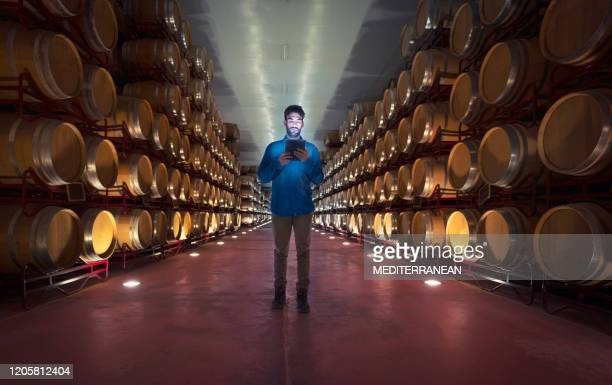 winemaker working in oak barrels at cellar - winery stock pictures, royalty-free photos & images