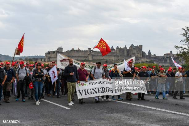 Winemakers holding Occitan flags demonstrate in the medieval city of Carcassonne southwestern France asking for government's aid after winemakers...