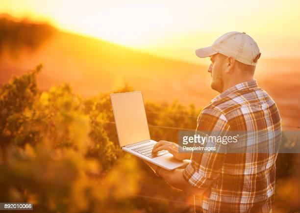 enólogos amam wifi - trabalhador rural - fotografias e filmes do acervo