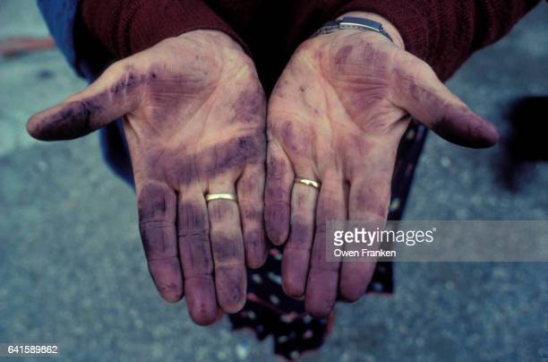 winemaker's stained hands - plus key stock photos and pictures