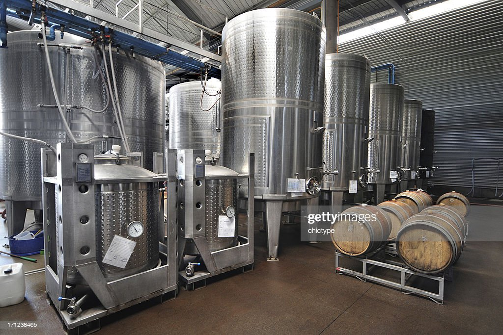 Winery : Stock Photo