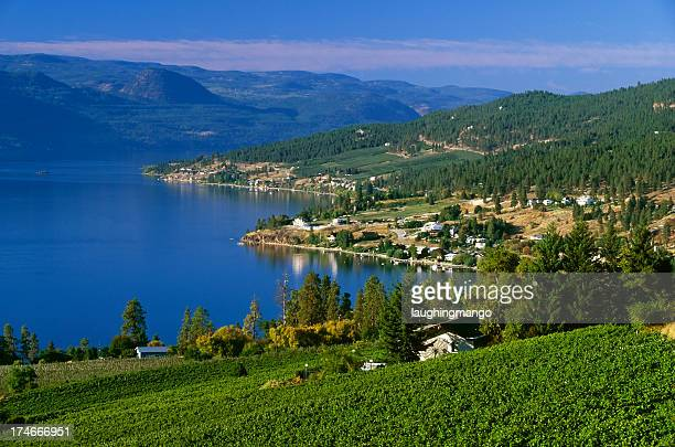 winery rural scenic lake landscape - british columbia stock pictures, royalty-free photos & images