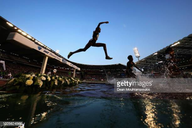 Winfred Mutile Yavi of Bahrain competes in the Women's 3000m steeplechase race during the IAAF Diamond League AG Memorial Van Damme at King Baudouin...
