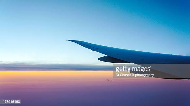 Wing on sky