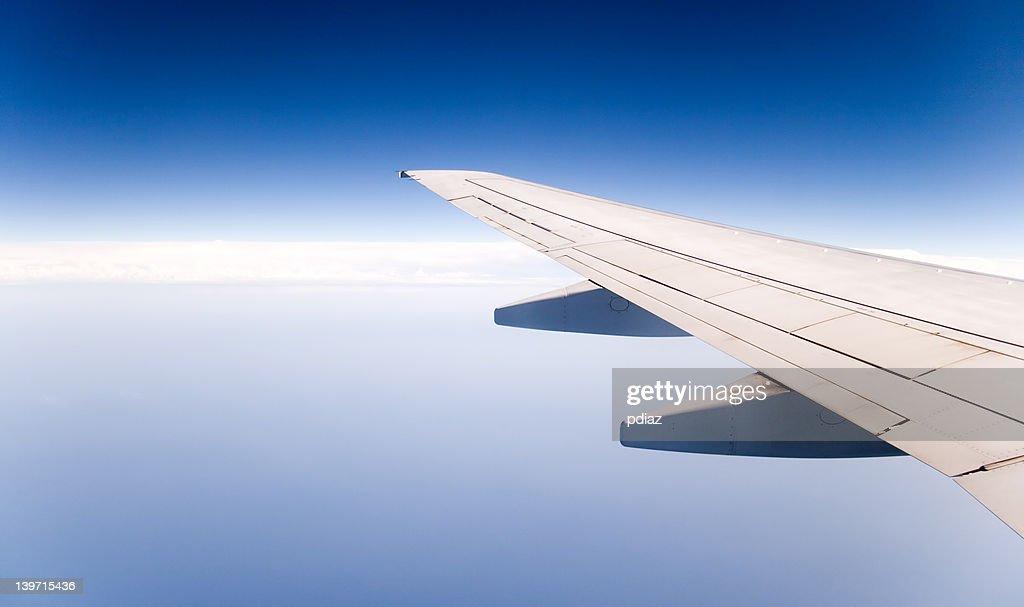 Wing : Bildbanksbilder