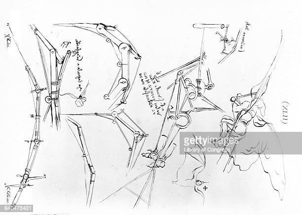 Wings and Flight Mechanisms by Carlo G Gerle After Leonardo da Vinci