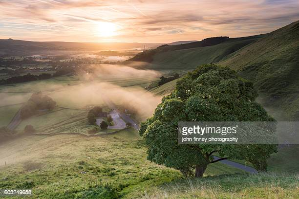 Winnats Pass Sycamore Tree sunrise, English Peak District.