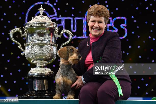 "Winner of Best in Show, the Wire Haired Dachshund, ""Maisie"" is held by owner Kim McCalmont at the trophy presentation for the Best in Show event on..."