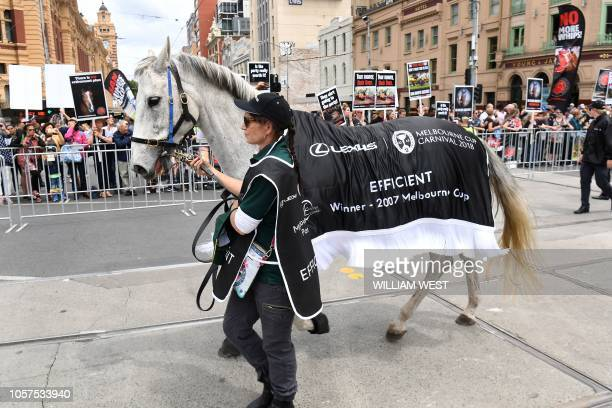 Winner of the 2007 Melbourne Cup Efficient is paraded during the Melbourne Cup parade in Melbourne's central business district on November 5 2018 The...