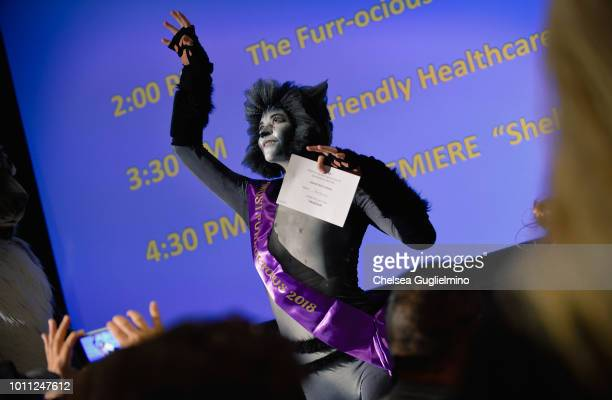 Winner of the Furrocious Fashion Face Off poses at CatCon Worldwide 2018 at Pasadena Convention Center on August 4 2018 in Pasadena California