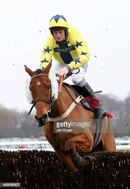 Winner Red Admirable ridden by Charlie Poste jumps the last in the ApolloBet Best Odds Guaranteed Handicap Steeple Chase during Irish day at Haydock...