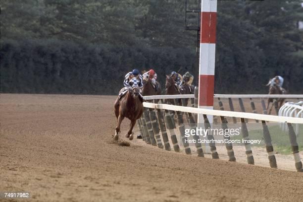 Winner Secretariat with Jockey Ron Turcotte during the Belmont Stakes on June 9 1973 at Belmont Park in Elmont New York