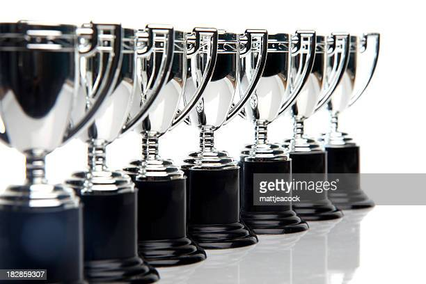 Winners Trophies