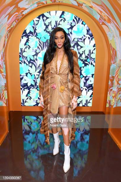 Winnie Harlow attends The Launch of Solar Dream hosted by Fendi on February 05 2020 in New York City