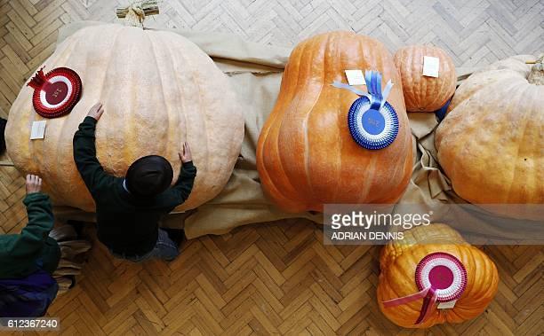 Winning pumpkin grower Ben BenEliezer hugs his pumpkin grown for the Royal Horticultural Society Harvest Festival show in London on October 4 2016...