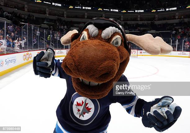 Winnipeg Jets mascot Mick E Moose celebrates following a 52 victory over the New Jersey Devils at the Bell MTS Place on November 18 2017 in Winnipeg...