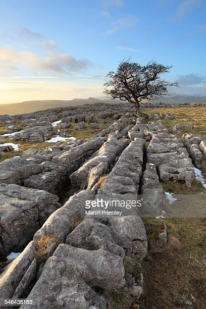 winskill stones - limestone pavement stock pictures, royalty-free photos & images