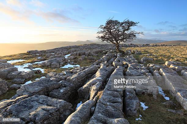 Winskill Stones, Yorkshire Dales