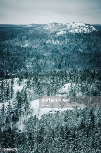 winter at huron mountains of upper peninsula - upper peninsula stock pictures, royalty-free photos & images