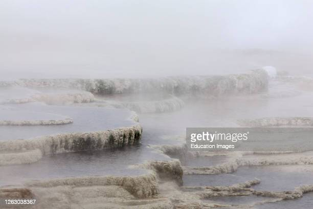 Winter at Mammoth Hot Springs in Yellowstone National Park WY