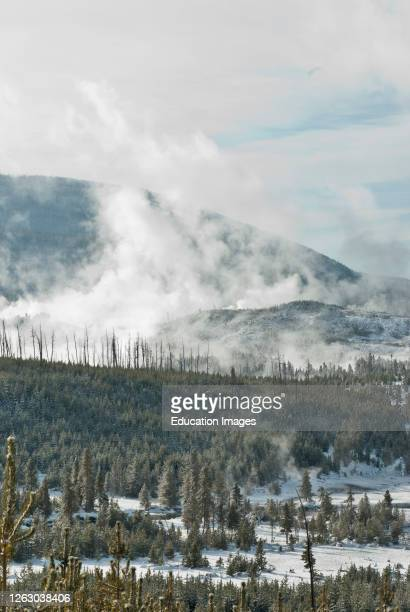 Winter at Norris Geyser Basin in Yellowstone National Park WY
