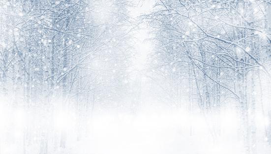 Winter background. 1067770436