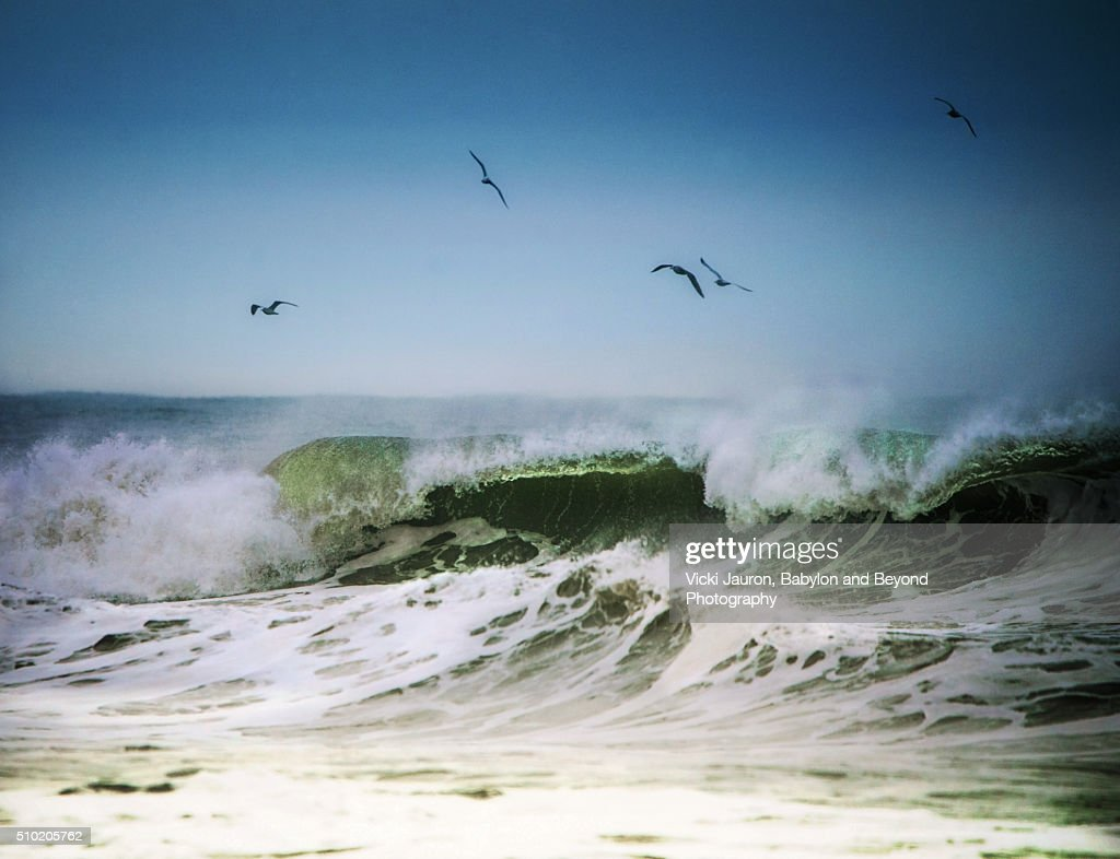 Winter Beach Scene At Robert Moses State Park Long Island NY Stock Photo