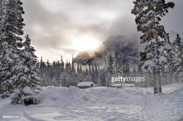 winter cabin - snow storm stock photos and pictures