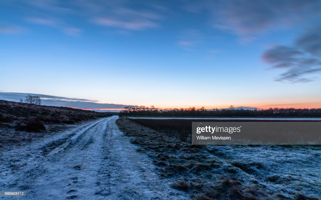 Winter Dirt Road : Stockfoto