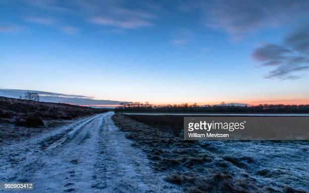 winter dirt road - william mevissen bildbanksfoton och bilder