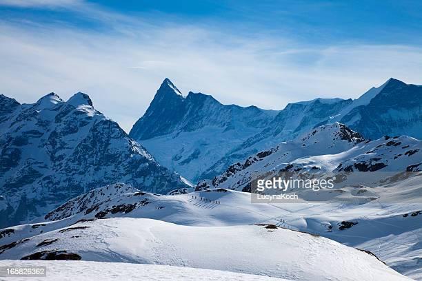winter dream - lucyna koch stock-fotos und bilder
