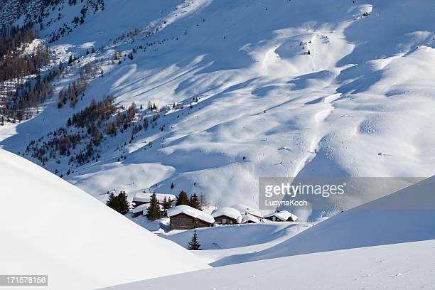 冬の夢 - アロサ ストックフォトと画像