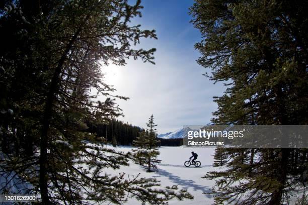 winter fat bike abenteuer entlang frozen lake - kieferngewächse stock-fotos und bilder