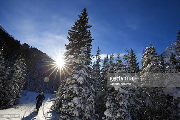 winter fat bike canada - deporte de invierno fotografías e imágenes de stock