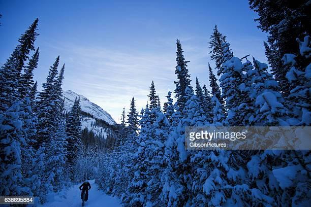 invierno en grasas bike ride - deporte de invierno fotografías e imágenes de stock