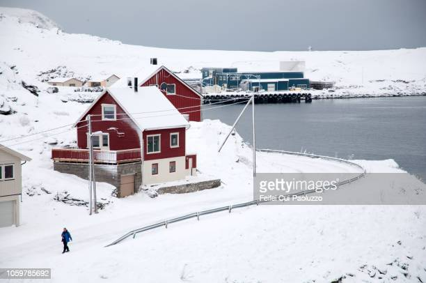 winter fjord landscape and coastal road of havøysund, northern norway. - feifei cui paoluzzo stock pictures, royalty-free photos & images