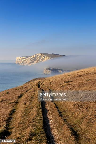winter fog at freshwater bay on an otherwise sunny day - s0ulsurfing stockfoto's en -beelden