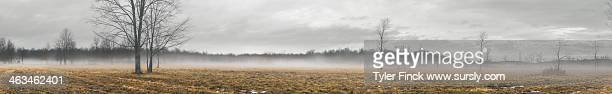 winter fog, rural panorama - sursly stock pictures, royalty-free photos & images