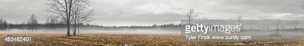 Winter Fog, Rural Panorama