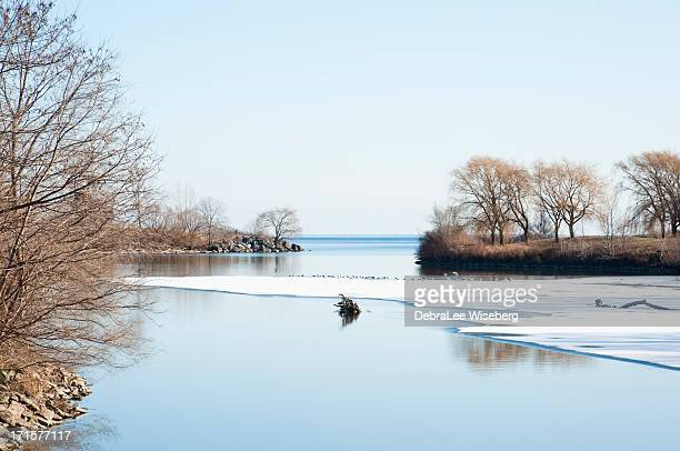 winter freeze - lake ontario stock pictures, royalty-free photos & images