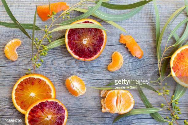 winter fruit - juicy stock pictures, royalty-free photos & images