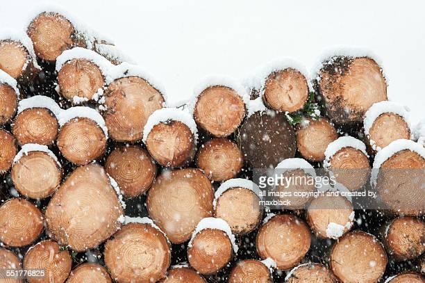 Winter Fuel-Cut Logs