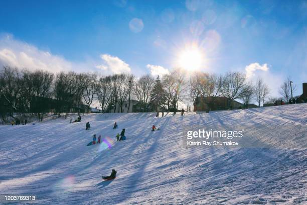 winter fun in parks of toronto (brief - 'its cold outside') - tobogganing stock pictures, royalty-free photos & images