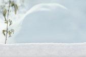 http://www.istockphoto.com/photo/winter-garden-landscape-blurred-background-gm888116972-246393746